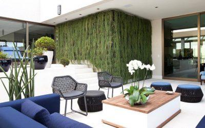 Conheça os benefícios de usar um jardim vertical