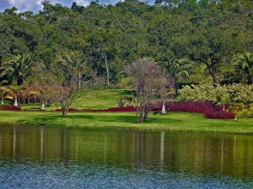 Fazenda CN ◽ Interior de Minas Gerais